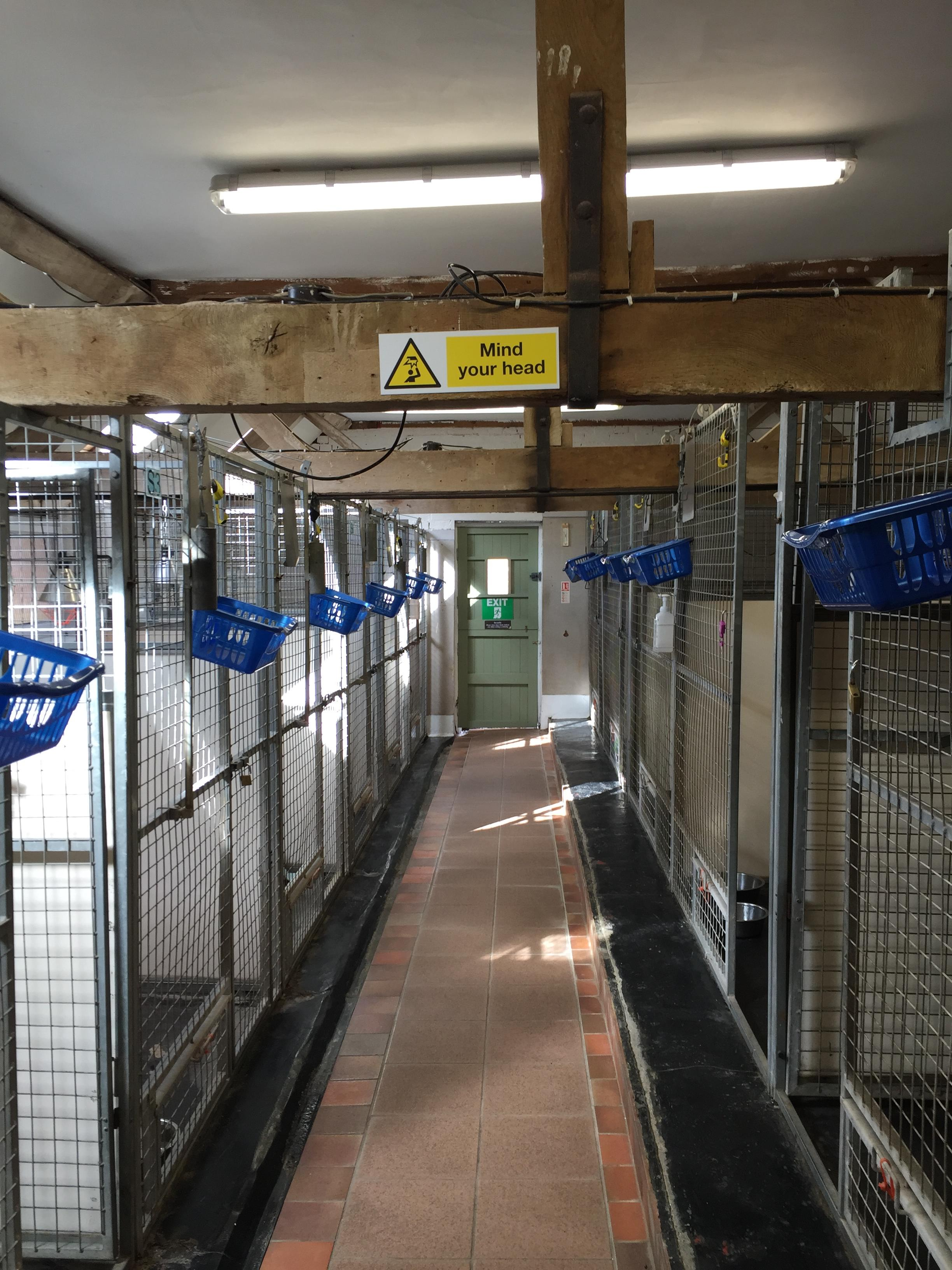 Hawksmoor Kennels Accommodation